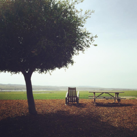 Cambria_winery